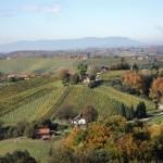 Пољопривредници у Словенији