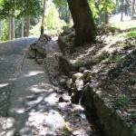 Уређење парка Пећина