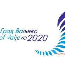 Визија Града Ваљева 2020.