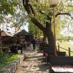 У Ваљеву засађено преко 1300 стабала дрвећа