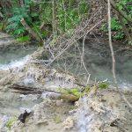 Пријављивање препрека у водотоковима