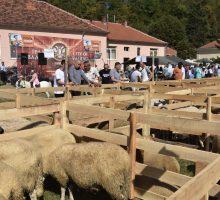 Успешни Овчарска изложба и Фестивал јагњећег печења у Причевићу