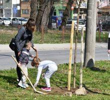 """Одржана акција """"Озелени Ваљево-улепшај живот"""""""